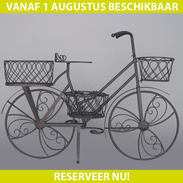 Tuinfiets metaal groen met manden 66x86x28cm max4home for Metalen decoratie fiets