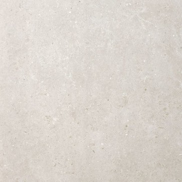 Tegels beren light grey 59,8x59,8cm