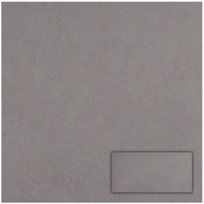Tegel traffic grey 30,0x60,0 cm