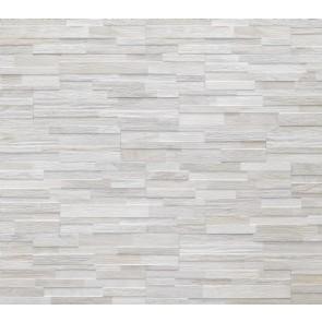 Tegels wall art ice j86615 15x61