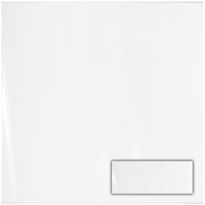 Tegels glans wit 20,0x50,0 cm