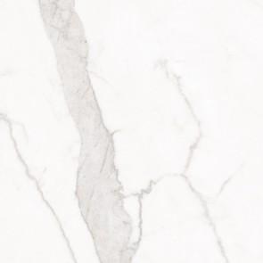 Tegels blanc calacatta 89,8x89,8