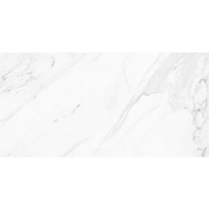 Tegels calacatta glossy rect 60x120
