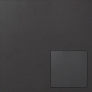 Tegel zwart 20,0x20,0 cm