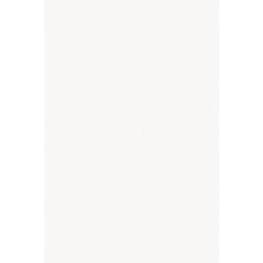 Tegels blanco sl09r 33,5x50,0