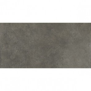 Tegels timeless anthracite 30x60 rett